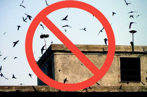Cấm sử dụng loa phóng